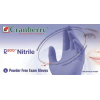 R200 Nitrile PF Glove Small